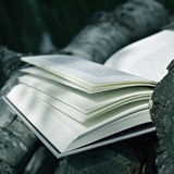 Book in a rustic scenery Stock Photos