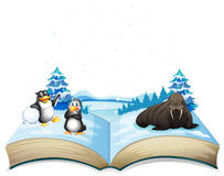 Book of sea lion and penguins on ice Royalty Free Stock Photo