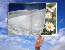 Book of seasons Stock Photos