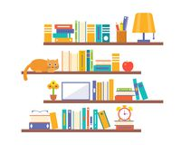 Book shelf background with elements such as lamp, alarm clock an. D cat, flat design royalty free illustration