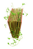 Book and Snow Pea Sprouts Royalty Free Stock Photo