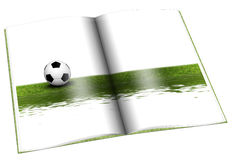 Book with Soccer ball on green Stock Photo