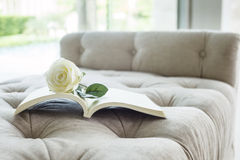 Book on sofa with white rose. Home interior Valentine concept Stock Photos