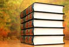 Book, Stack, Books Royalty Free Stock Images