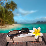 Book and sunglasses, tropical beach Stock Image
