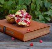 Book and pomegranate on table. Good book - best friend Stock Photography
