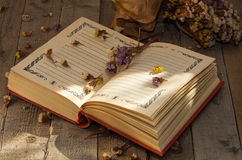 Book to write notes with dried flowers. Royalty Free Stock Photos