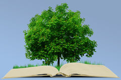 Book and tree Royalty Free Stock Photo