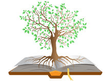 Book tree Royalty Free Stock Image
