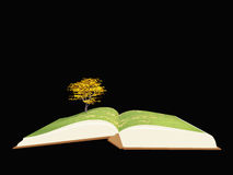 Book with tree Stock Photos