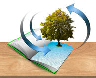 Book with tree and water. Illustration with open book on the table with trees and water Royalty Free Stock Images