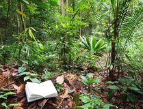 Book in tropical rainforest background royalty free stock photos