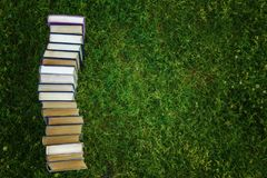 Book tutorials are on the green grass royalty free stock photos