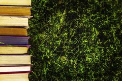 Book tutorials are on the green grass. Soon back to school royalty free stock photography
