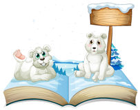 Book of two polar bears on snow Royalty Free Stock Photos