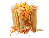 Book under leaves. Book under maple leaves isolated Stock Images