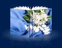 Book of wedding flowers and candy Stock Photography