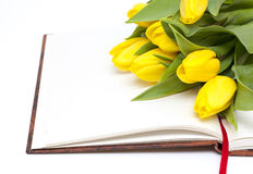 Book and white flowers on it Royalty Free Stock Photography