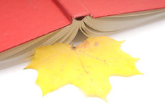Book wih autumn leaves Royalty Free Stock Photo