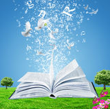 The Book of Wisdom Stock Photo