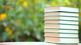 Book wooden table tree bokeh nobody. Day light stock video