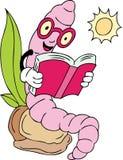 Book Worm Stock Image