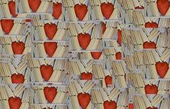 Bookcase для любовников стоковое изображение