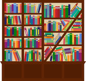 Bookcase Royalty Free Stock Photos