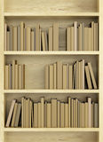 Bookcase with books Royalty Free Stock Photography