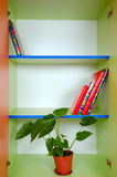 Bookcase with books and a plant. Domestic bookcase with some books and a plant Royalty Free Stock Photos