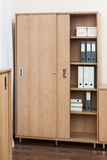 Bookcase with folders and boxes royalty free stock photo