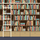 Bookcase With Ladder Stock Photos