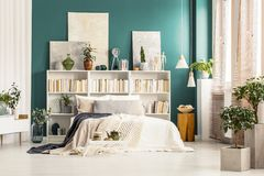 Bookcases with paintings on top. Standing against a dark green wall behind white bed in bright bedroom interior stock photo