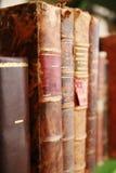 Bookds antique image libre de droits