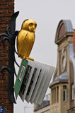Bookish golden owl Stock Image