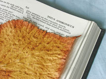 Bookmark. A dried leaf used as a bookmark on old Shakespeare's anthology Stock Photo