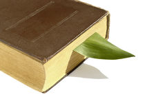 Bookmark im Buch Stockfotografie