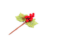 Bookmark twigs and berries Stock Photography