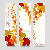 Bookmarks with colorful autumn maple leaves Stock Photo