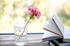 Free Books Are Ready For Reading Lying On A Wooden Windowsill Next To A Glass With Clear Water In Which There Is A Pink Geranium Flower Stock Photos - 159522293