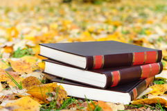 Books on the autumn leaves Royalty Free Stock Photography