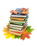 Books and autumn leaves on a white background. Books and autumn maple leaves isolated on white background Stock Photography
