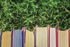 Books on a background of green grass back to school stock photography