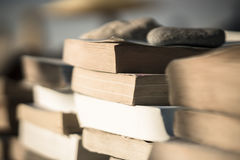 Books on the beach 6 Stock Photography
