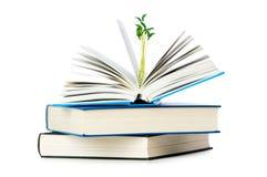 books begreppskunskap Arkivbild