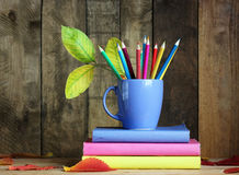Books and colored pencils. Back to school. Stock Images