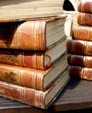 books den gammala bunten Fotografering för Bildbyråer