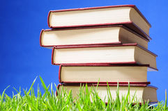 Books. Educational concept. Stock Image