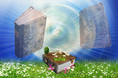 Books on the field. With trees and flowers Stock Photo