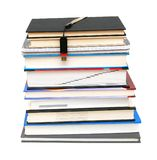 Books and flash memory Royalty Free Stock Photography